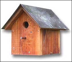 tpwd bird house plans
