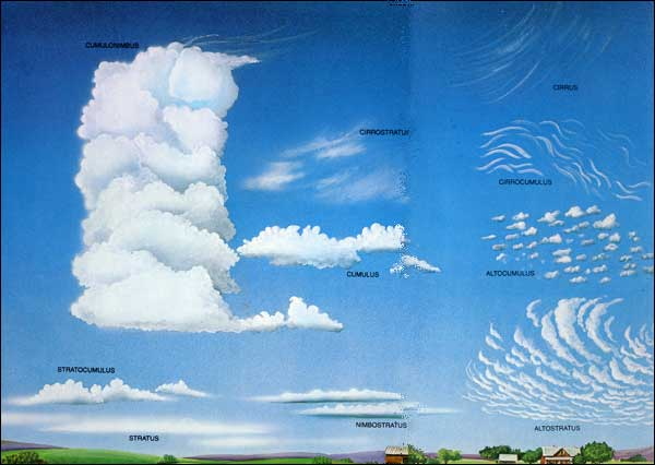 TPWD: Clouds -- Young Naturalist