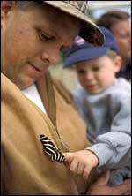 Father and Son with Butterfly