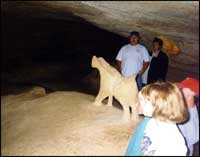 Children in Longhorn Cavern
