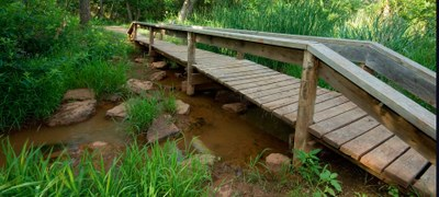 A boardwalk bridge at Abilene State Park