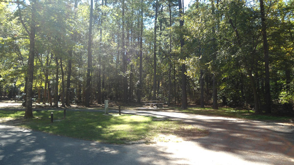 Site #18 in the Knights Bluff area.