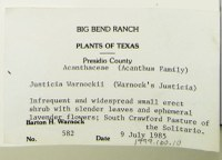 Typed notes for a plant collected by Dr. Warnock.