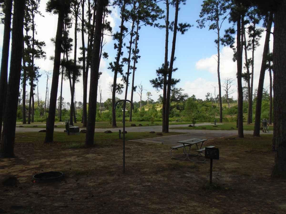 Campsite 53 in the Copperas Creek Camp area.
