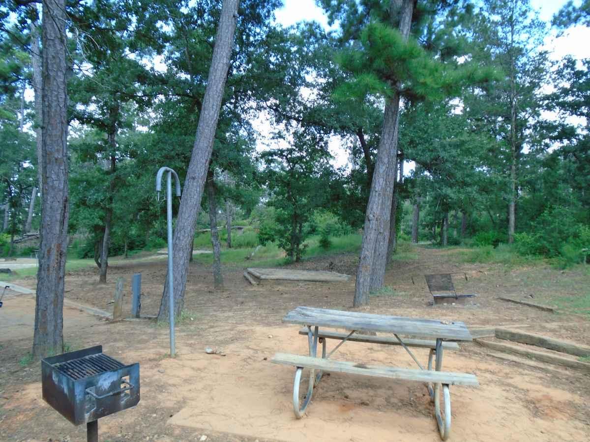 Campsite 57 in Copperas Creek Camp area.