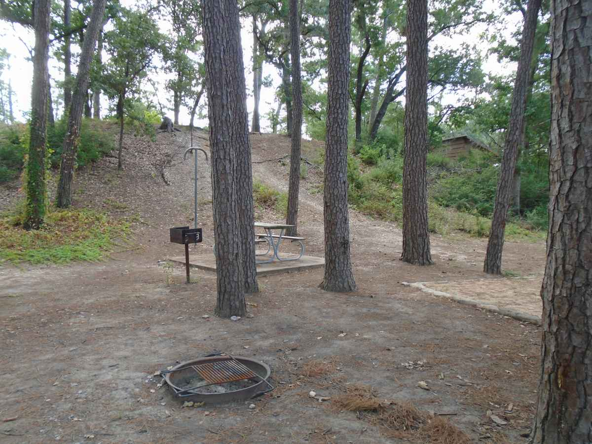 Campsite 62 in the Copperas Creek Camp area.