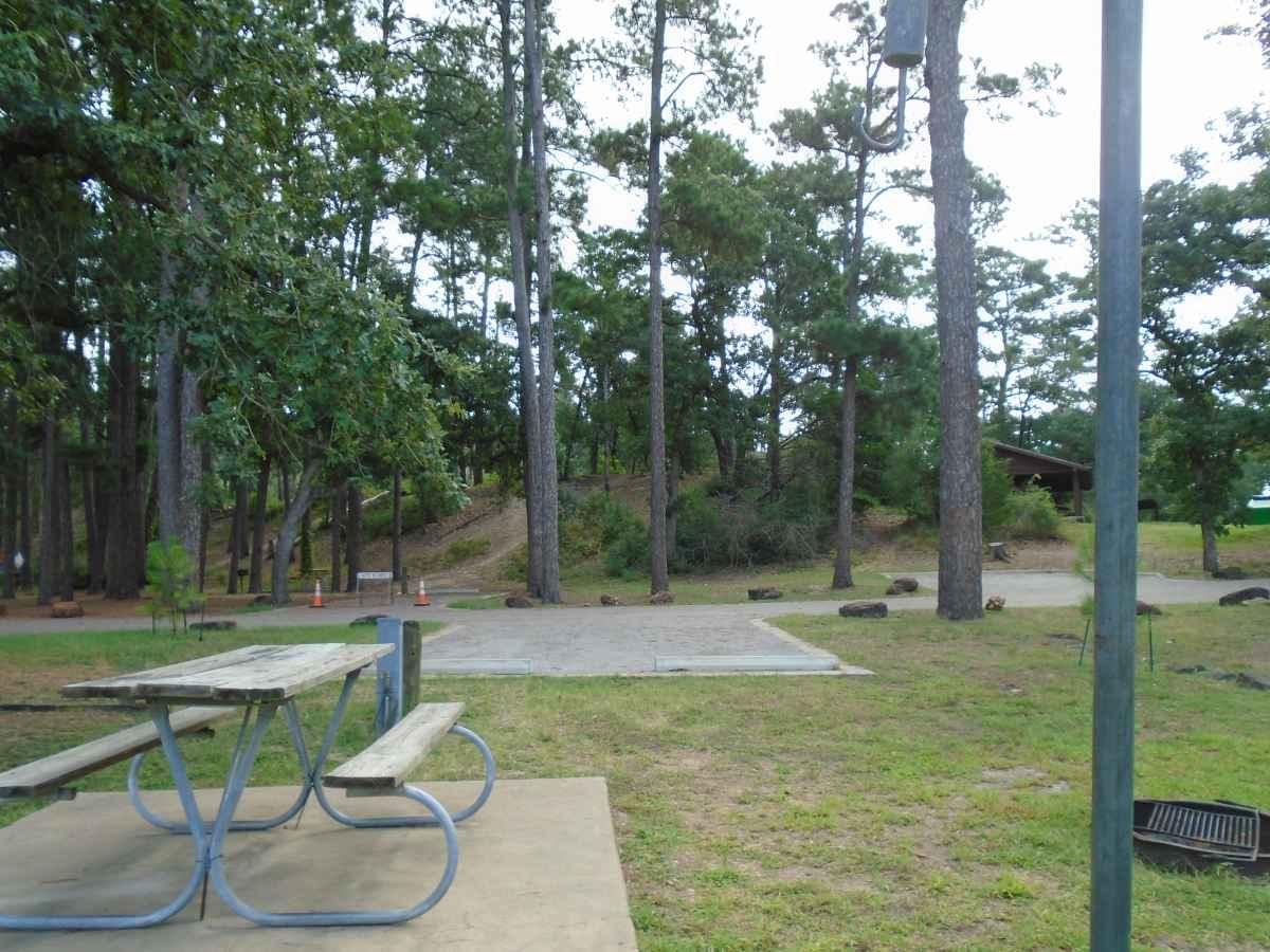 Campsite 67 in the Copperas Creek Camp area.