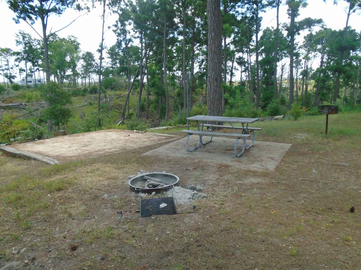 Campsite 31 in the Deer Run camping area.