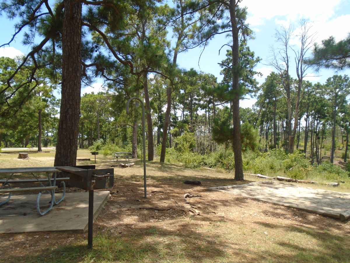 Campsite 37 in the Deer Run camping area.