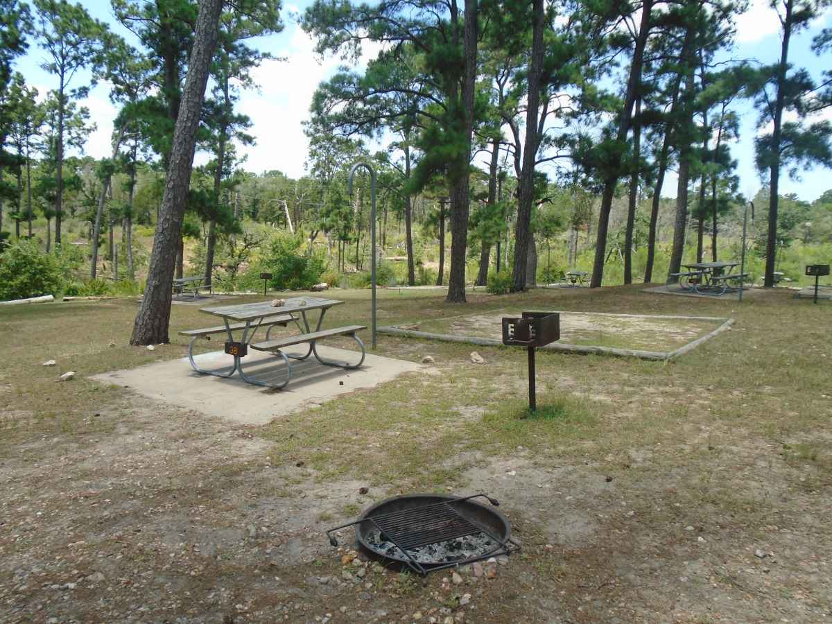 Campsite 38 in the Deer Run camping area.