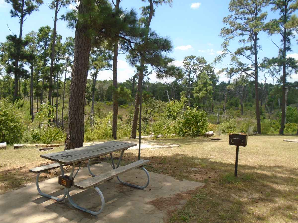 Campsite 39 in the Deer Run camping area.