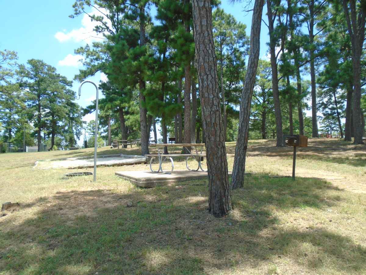 Campsite 41 in the Deer Run camping area.
