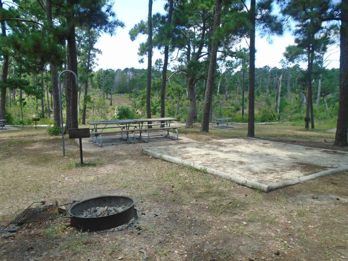 Campsite 42 in the Deer Run camping area.