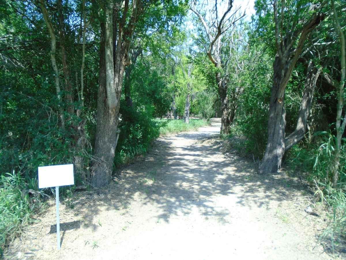 The trail into the Walk-in Campsite Area.