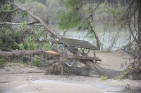 Picnic table caught in flood debris beside the river