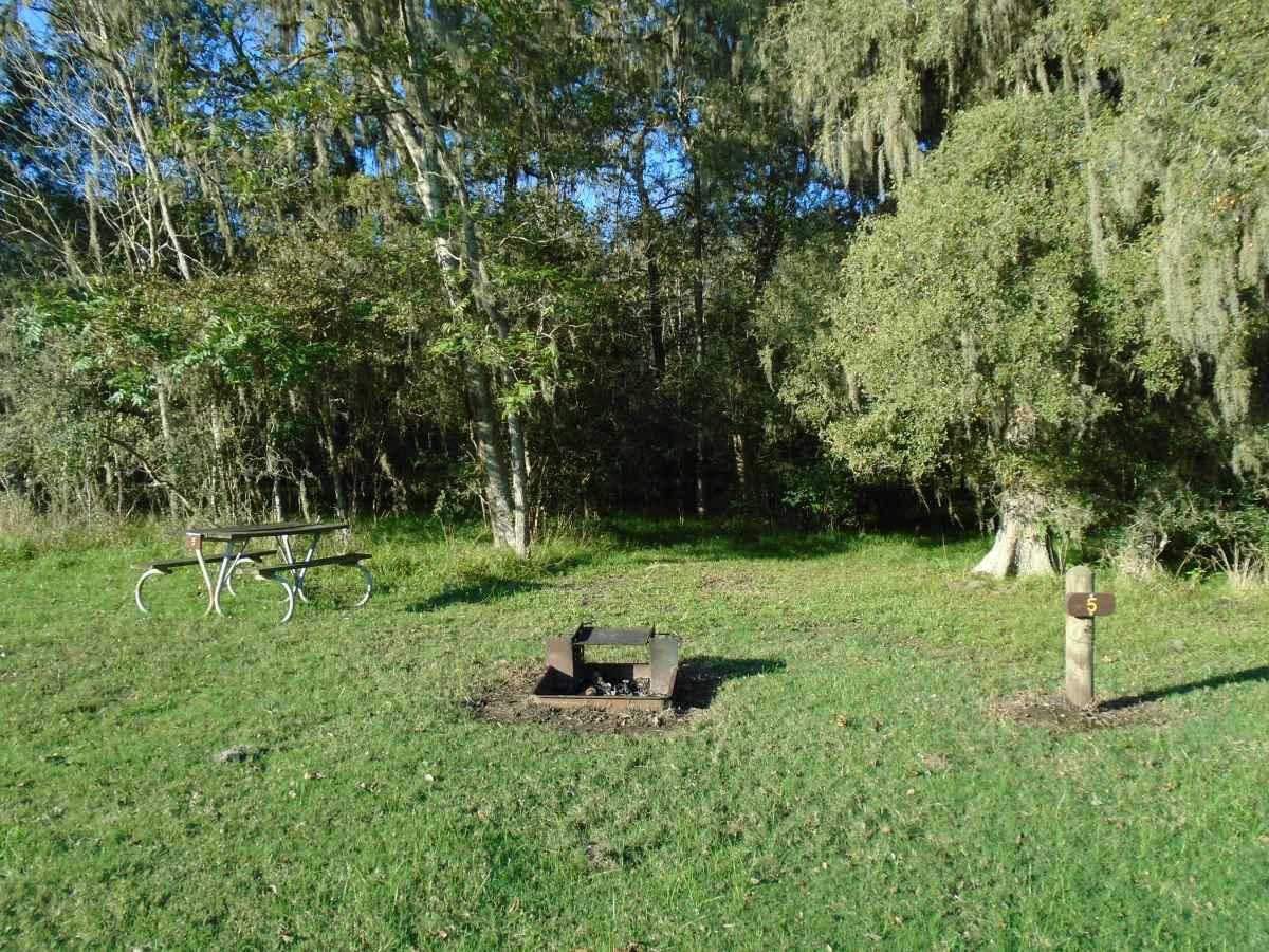Premium Primitive Campsite #5.