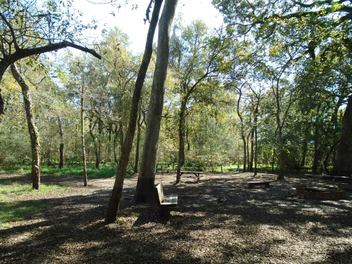 Youth Group Camping Area (32-person) - Site #2.