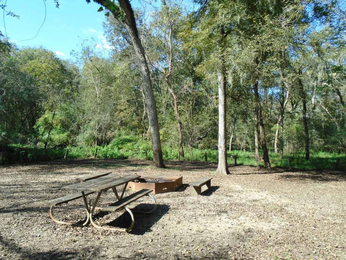 Site #1 of the two Youth Group Camping Areas (32-person)