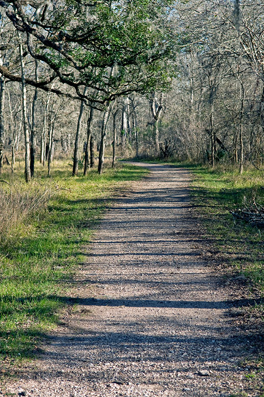 Cabin In Woods >> Brazos Bend State Park History — Texas Parks & Wildlife Department