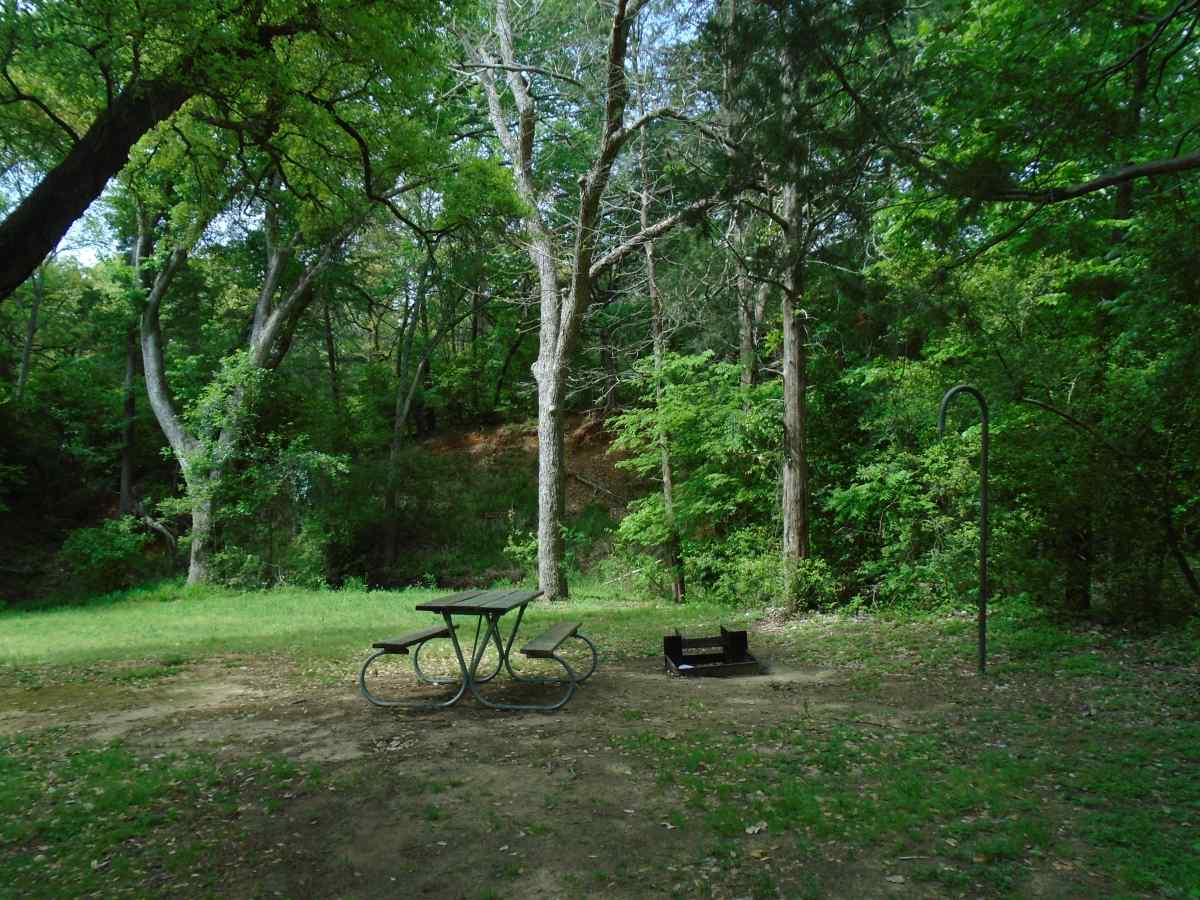 Buescher State Park Campsites with Water — Texas Parks ...
