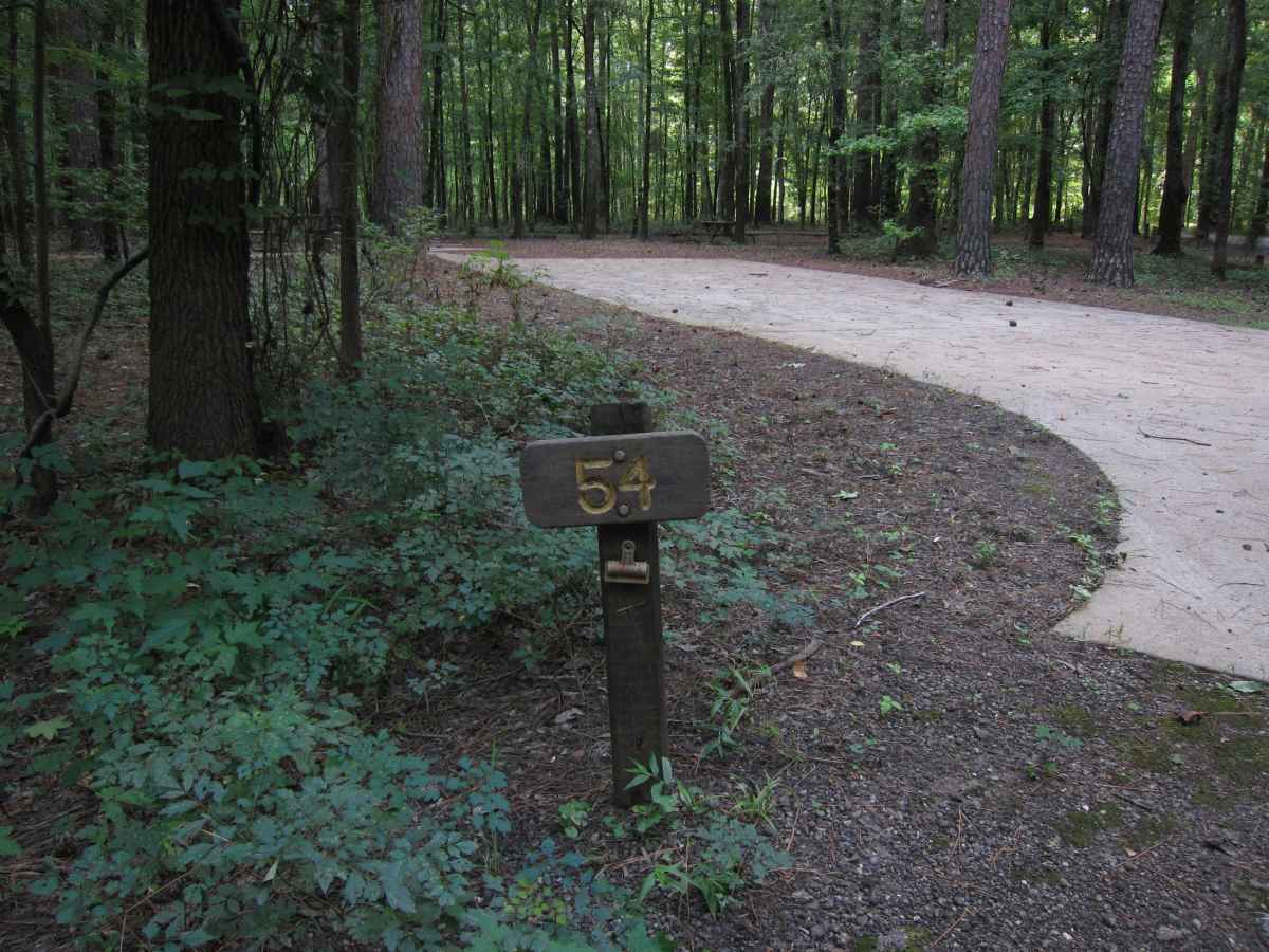 Campsite 54 is designed to be wheelchair friendly.