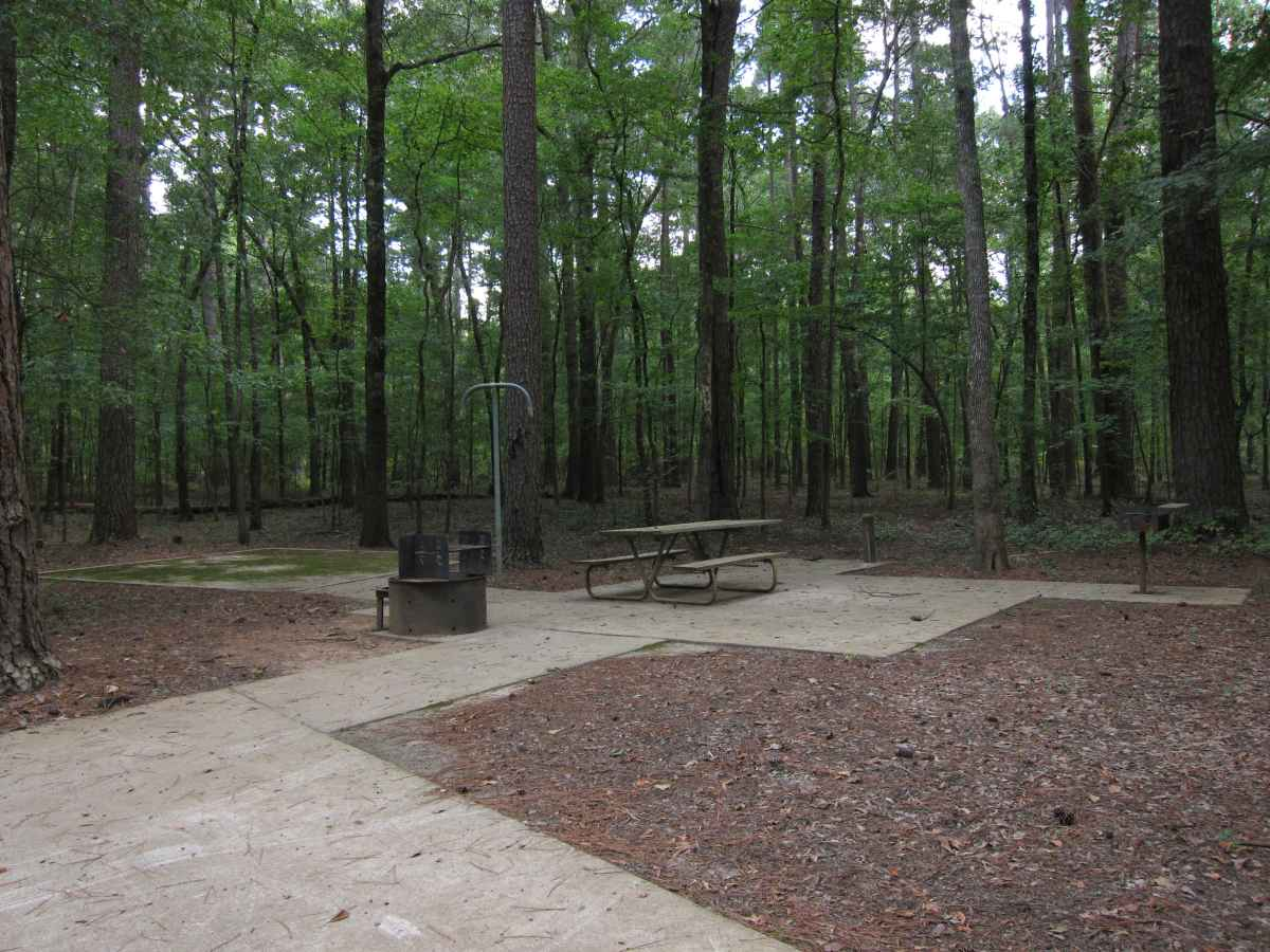Caddo Lake State Park Campsites With Water Texas Parks