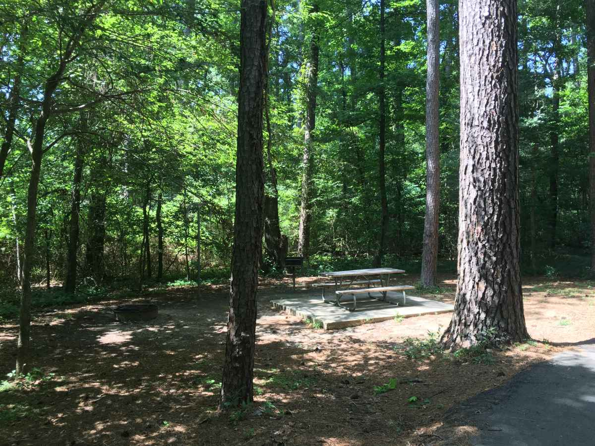 A view of the picnic table at Full Hookup Campsite 20.