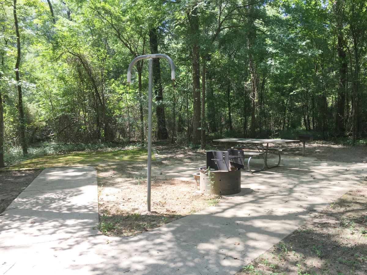 Campsite 38 in Squirrel Haven, has a picnic table, fire ring and an upright grill designed to be usable for people in wheelchairs.