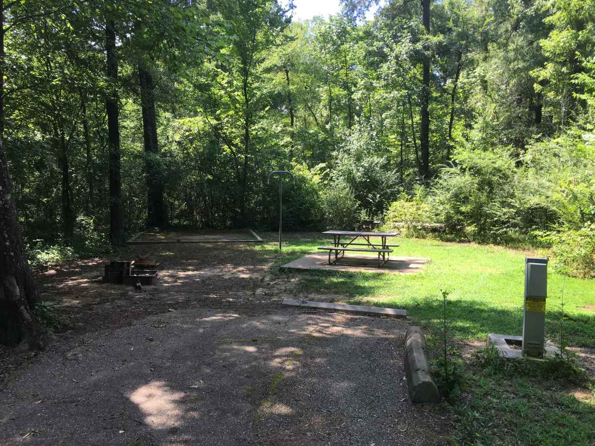 Campsite 37 in Squirrel Haven. All Standard Campsites have a 30-amp electric hookup, water. a picnic table. fire ring, upright  grill and a lantern post