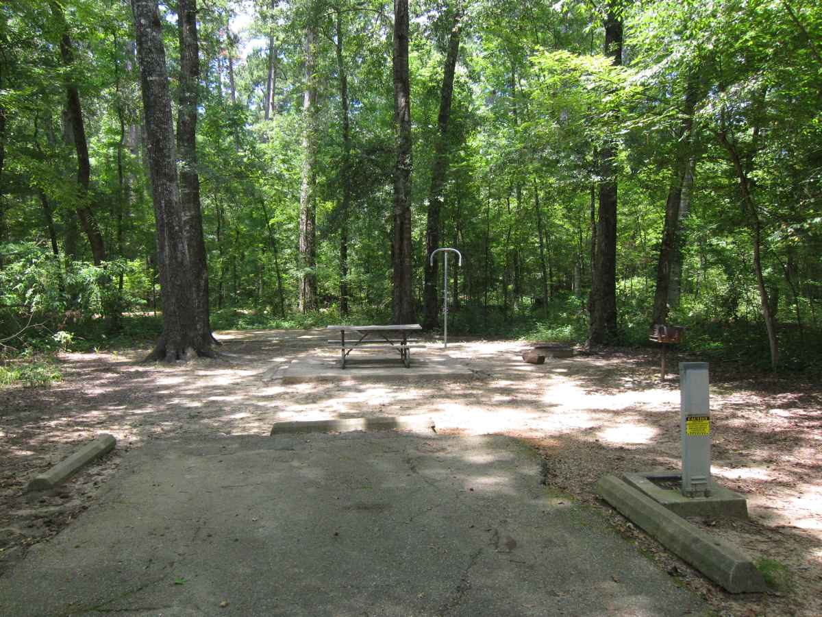 Caddo Lake State Park Campsites With Electricity Texas