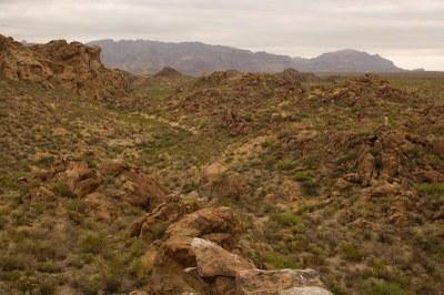 Desert terrain.