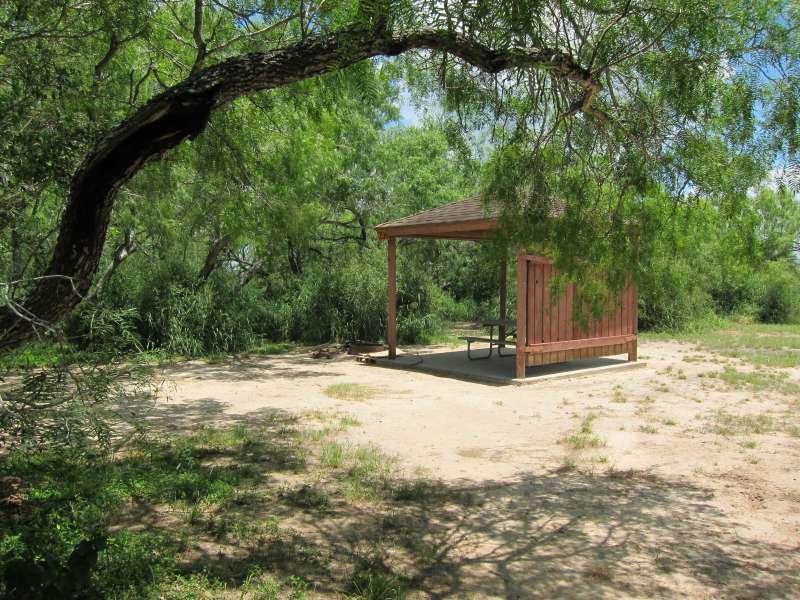 Walk-in Campsite #206.