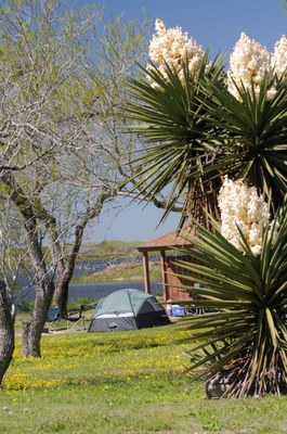 View of campsite by the lake