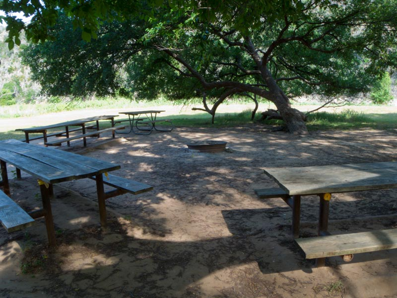 Shade trees surround the picnic tables and group fire ring.