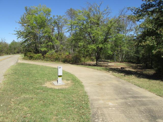 Site #29, Bright Star Camping Area