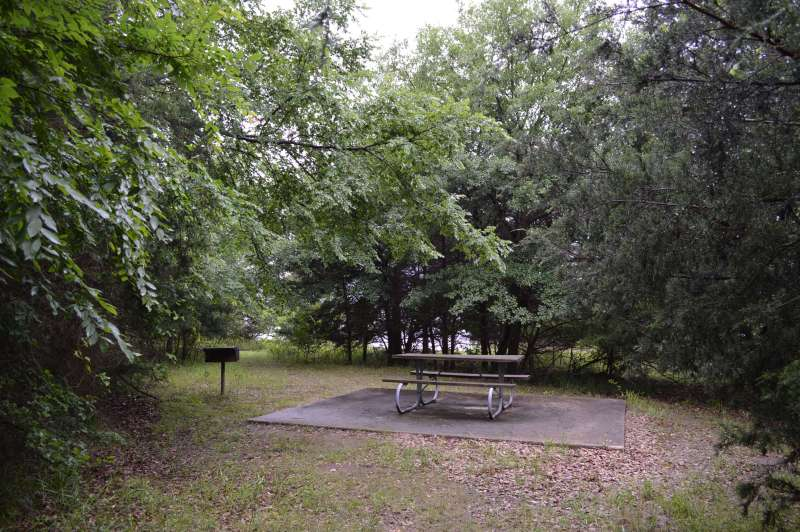 Cooper Lake State Park Group Camping Area Doctors Creek