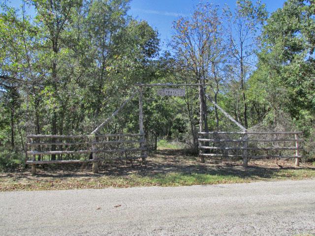 Trailhead near camping area