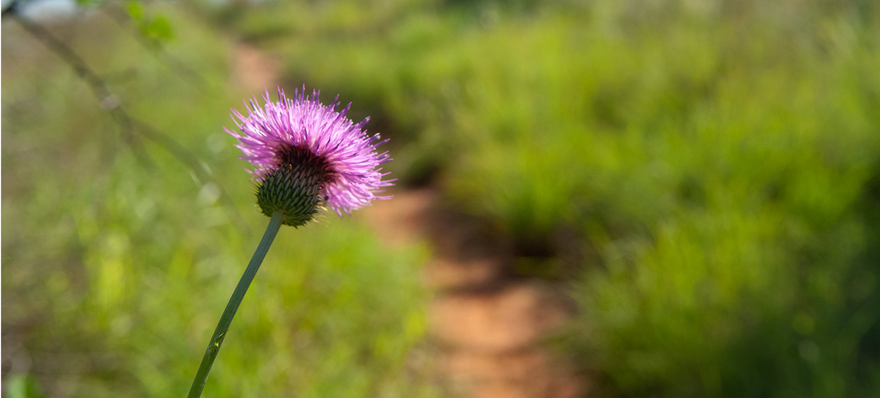 Copper Breaks State Park — Texas Parks & Wildlife Department