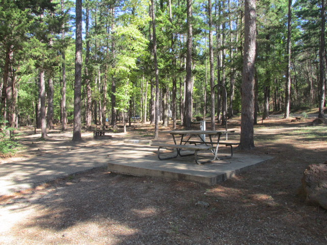 Mountain View Camping Area site