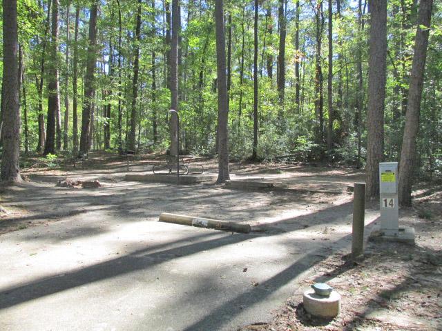 Dogwood area - site #14