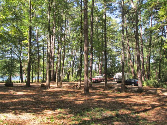 Dogwood Camping Area lakeside campsite