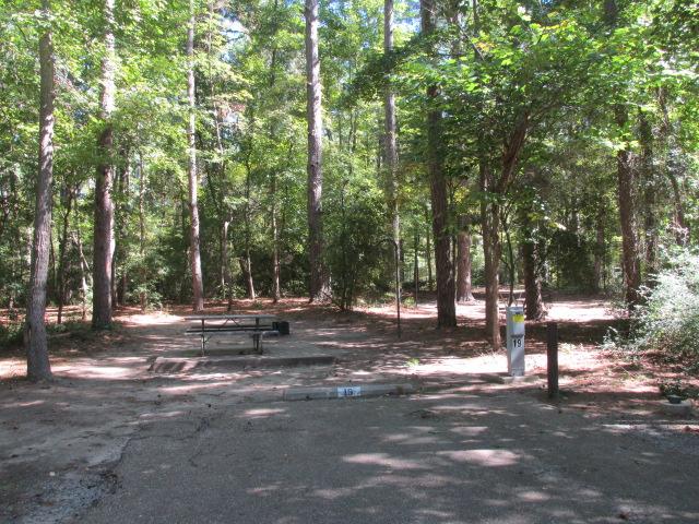 Dogwood area - site #19