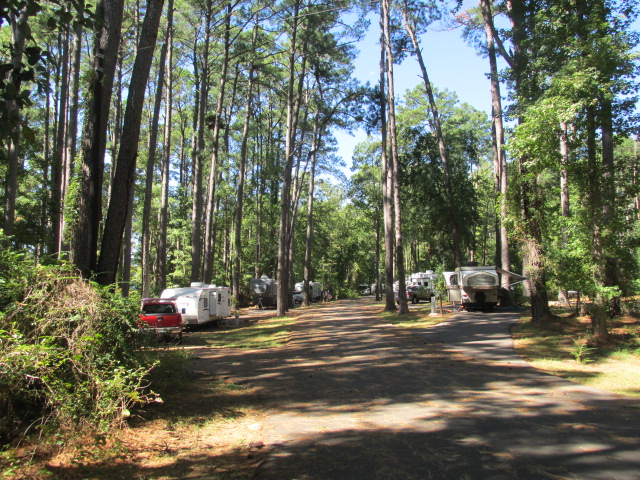 Daingerfield State Park Full Hookup Campsites Pull
