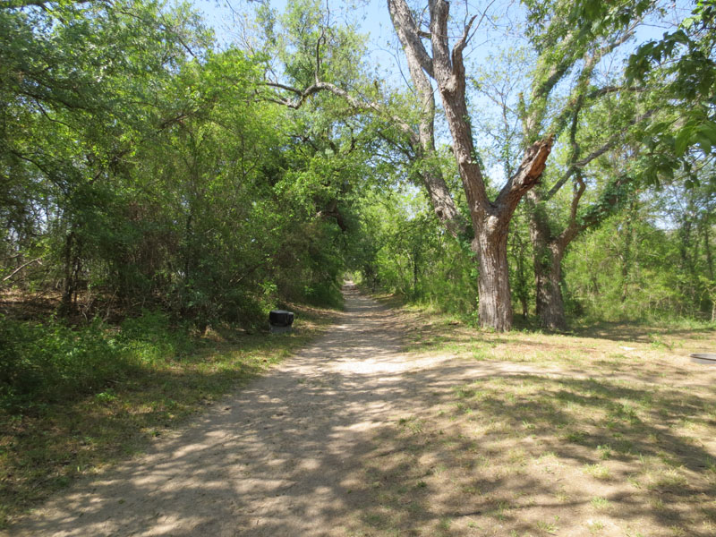 The trail to the South Primitive Area.