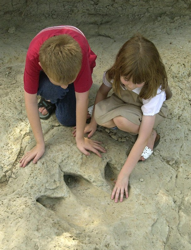 Dinosaur Valley State Park History Texas Parks Wildlife Department