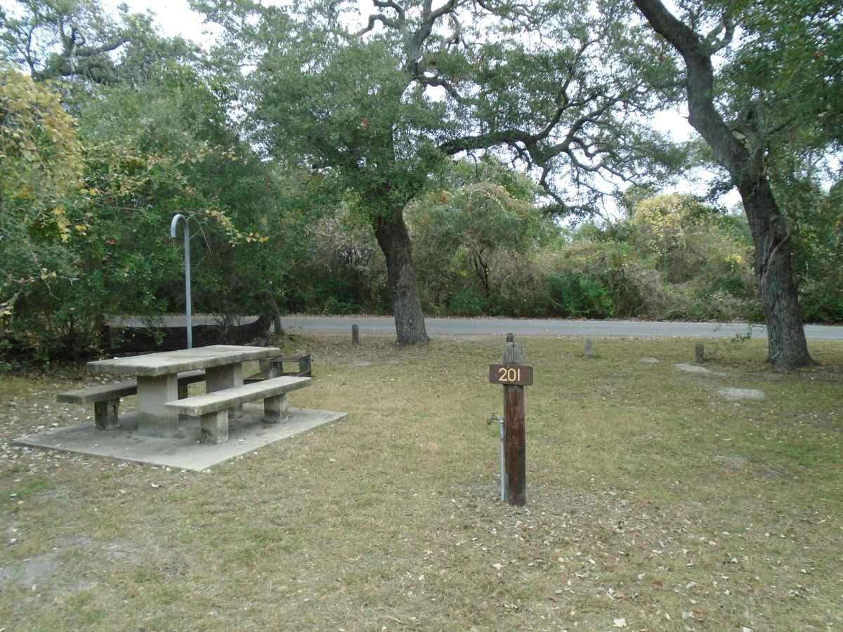 Standard Walk-in Campsite 201.