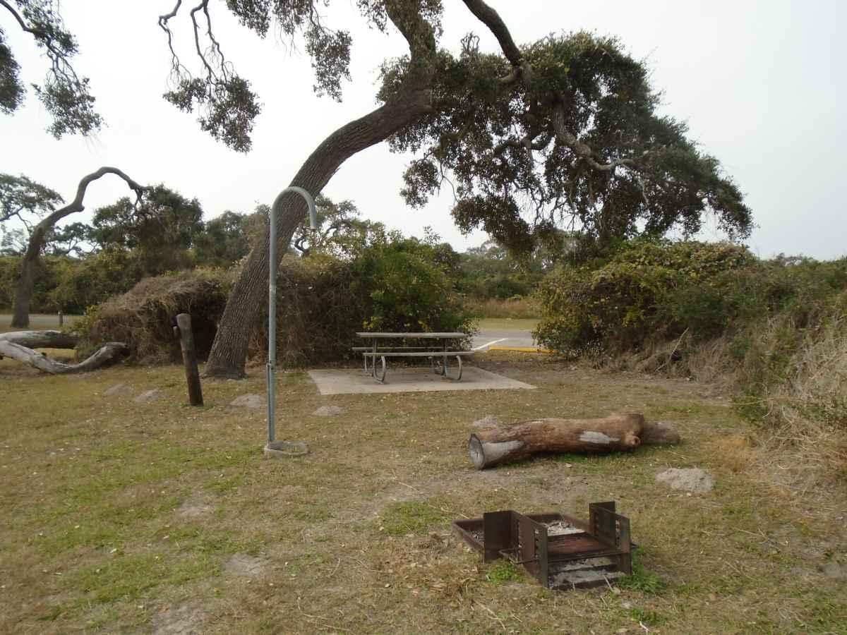 Standard Walk-in Campsite 209.