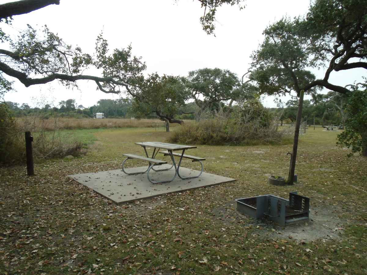 Standard Walk-in Campsite 214.