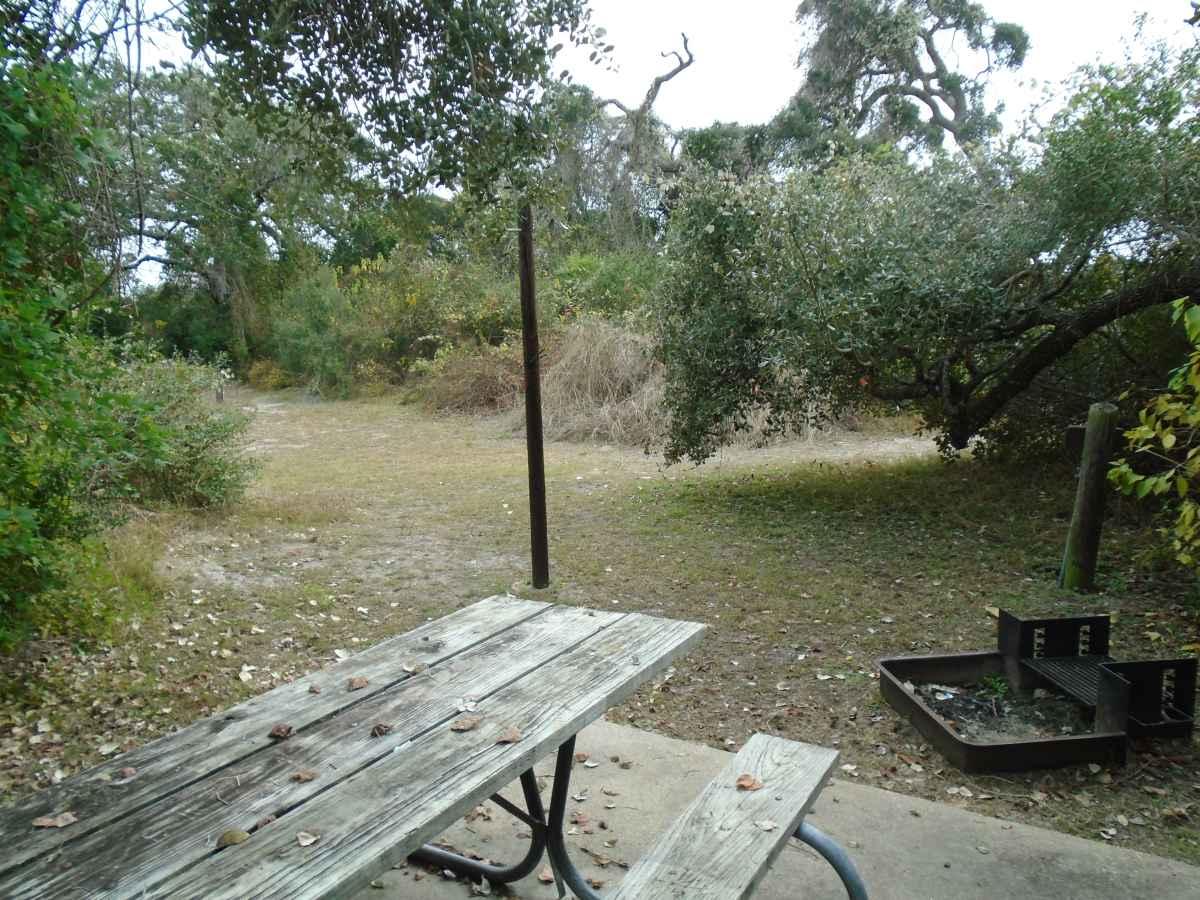 Standard Walk-in Campsite 215.