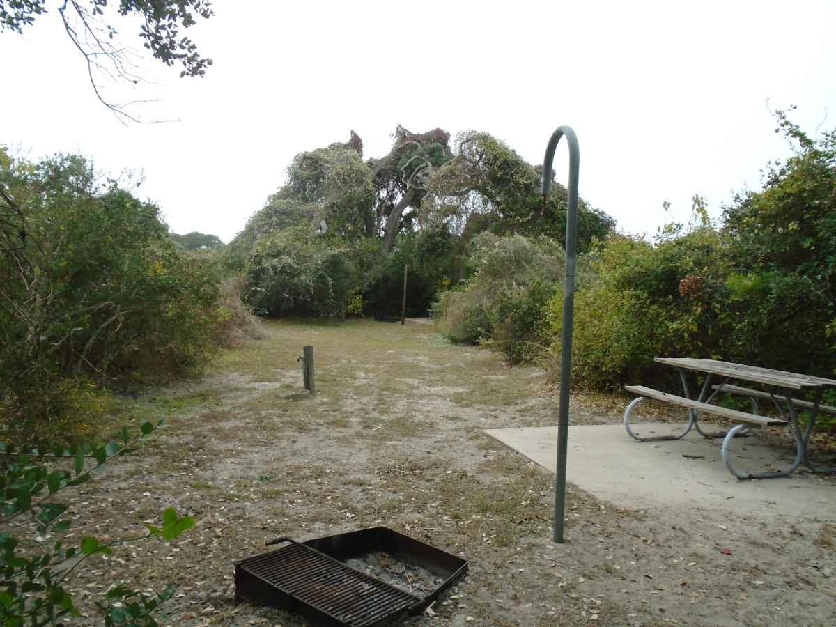 Standard Walk-in Campsite 216.